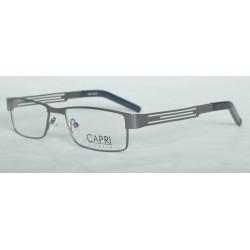 CAPRI281