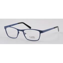 CAPRI283