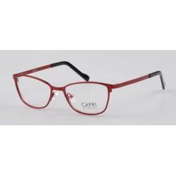 CAPRI284