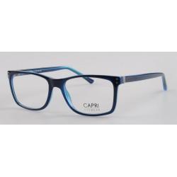 CAPRI298