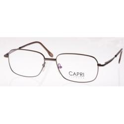 CAPRI122