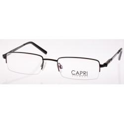 CAPRI128