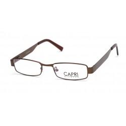 CAPRI200