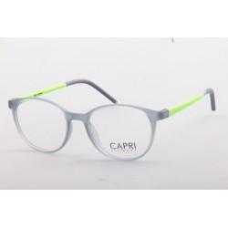 CAPRI339
