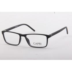CAPRI340