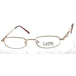 CAPRI085