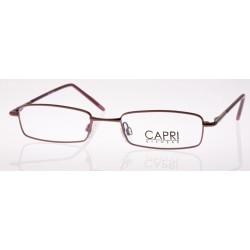 CAPRI127
