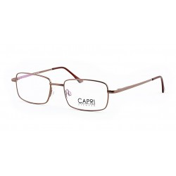 CAPRI142