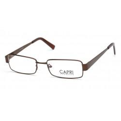 CAPRI198