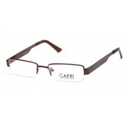 CAPRI207