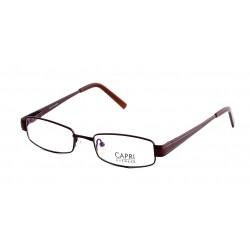 CAPRI211