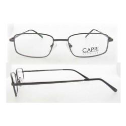 CAPRI257